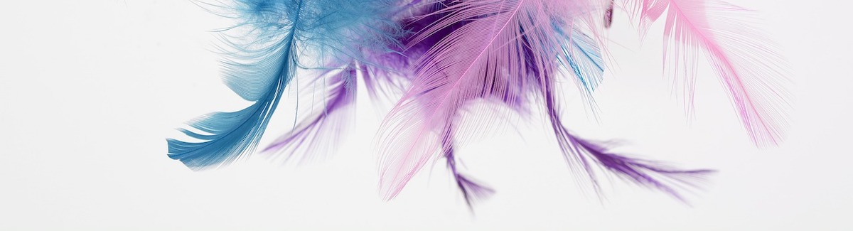 feather-3092915_1280